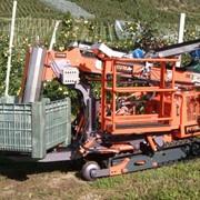 Самоходная платформа для уборки фруктов Revo Puima Revolution Pianura (Италия) фото