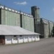 Хранение сельхозпродукции фото