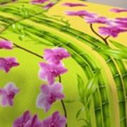 Ткань постельная Бязь 125 гр/м2 150 см Набивная цветной/S874 TDT фото