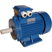 Электродвигатель АИР 112 М2 фото