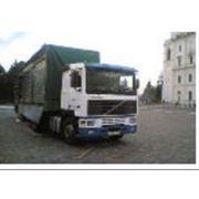 Автоперевозки по Житомирской области и по Украине фото