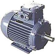 Электродвигатели взрывозащищенные трехфазные асинхронные в ассортименте