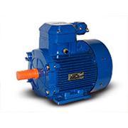 Электродвигатель взрывозащищенный 4ВР(АИМ)71 производство ТД «Могилевский завод «Электродвигатель» фото