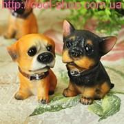 Сувенирные маленькие щенята фото