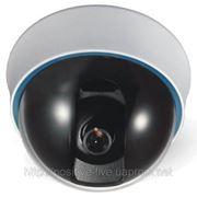Видеокамера купольная цветная STS-C416VF/3.5-8 фото