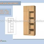 Мебель офисная: Шкаф для документов ШД-6 фото