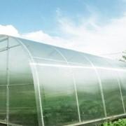 Теплица Урожай из сотового поликарбоната фото
