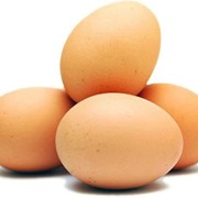Яйца оптом фото