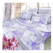 Комплект постельного белья Сова и Жаворонок Госпожа, 1,5 спальное фото