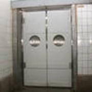 Двери маятниковые фото