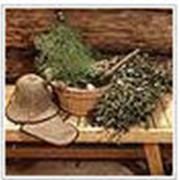 Сборные веники из разнообразных целебных растений фото