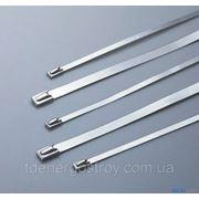 Стяжки металлические SSB-300x4.6 фото