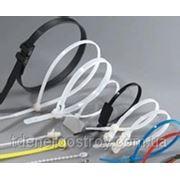Стяжки NCT-250x4,8 фото