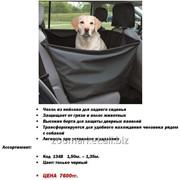 Авто-чехол на сиденья авто, Автогамак для собак фото