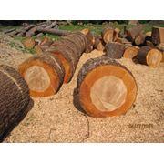 дрова ольховые фото