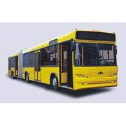 Автобус МАЗ - 105 фото