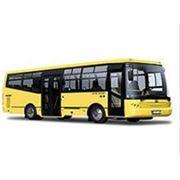 Автобус городской, Probus 215 SCB, автобусы городские, общественный транспорт фото