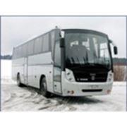Автобус большого класса для междугородних и туристических перевозок ГолАЗ-5291 Круиз фото