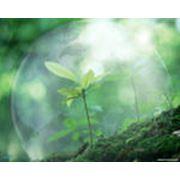 Планирование мер по охране окружающей среды фото