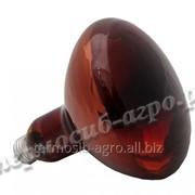 Лампа инфракрасная зеркальная ИКЗК 250 Вт фото