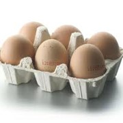 Продажа и доставка яиц фото