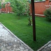 Укладка рулонного газона фото