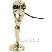 Веб-камера Оскар фото