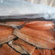 Хребты лосося фото