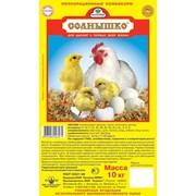 Полнорационный корм для цыплят Солнышко 25кг/упак. фото