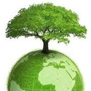 Создание единой системы мониторинга выбросов парниковых газов на предприятии фото