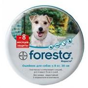 Ошейник для собак и котов весом до 8 кг 38 см Foresto фото