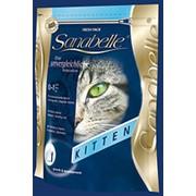 Корм сухой для котят до года и беременных /кормящих кошек Бош Киттен Санабелль фото