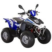 Квадроцикл STELS ATV 100C фото