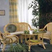 Комплект для отдыха 01/15 - мебель из ротанга фото