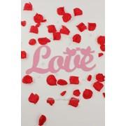 """Декор-надпись """"LOVE"""" с птичками/розовый фото"""