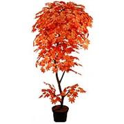 Искусственное дерево Клен Карен (Код товара: 47103) фото