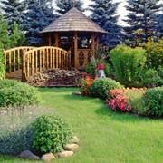 Ландшафтный дизайн сада, благоустройство и озеленение территорий фото