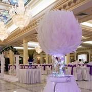 Свадебные услуги в Алматы. Драпировка тканью, оформление страусиными перьями фото