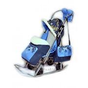 Санки-коляска Sofi Luxury ЭМИ3 фото