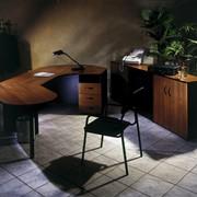 Офисная мебель Деловой Профессионал фотография