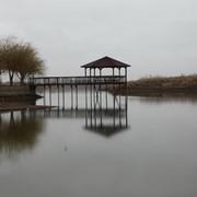 Озеро с земельным участком фото