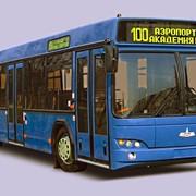 Автобус городской МАЗ-103 фото