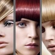 Придание объема и блеска волосам. SPA-процедуры лечения волос фото