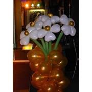 Декор из шаров фото
