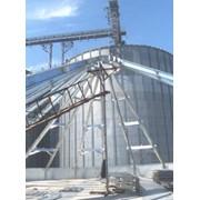 Строительство сельскохозяйственных предприятий фото