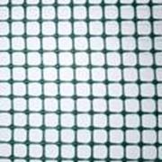 Пластиковая сетка Белрегионснаб С12х12/1,0х20 фото