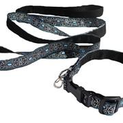 Комплект: ошейник + поводок для собаки черный c голубым фото