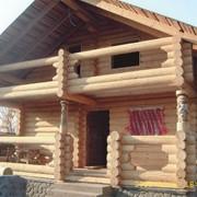 Проекты домов из бревна фото