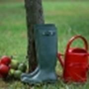 Обувь для сада и огорода фото