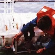 Системы газонаполнения для аварийных спасательных средств фото
